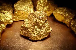 جذب طلا توسط گیاهان